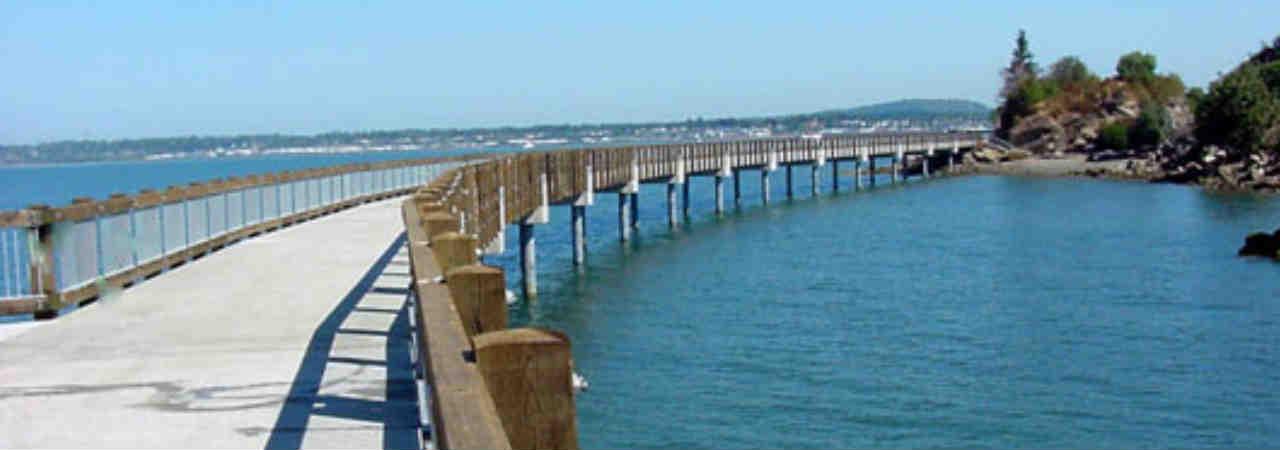 BBay Running - Taylor Dock